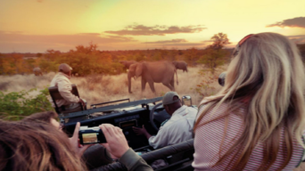 5 Great National Parks you have to visit in South Africa